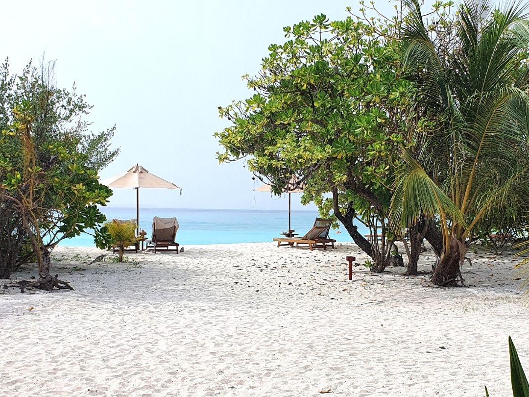 Heilerreise Malediven - unser Hotel